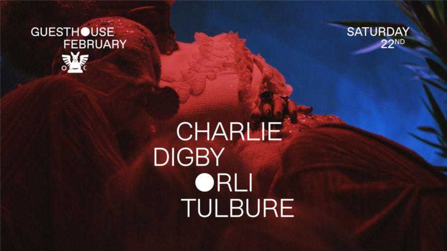 GH 22.02: Charlie / Digby / Orli / Tulbure